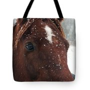 Brown Snow Horse Tote Bag
