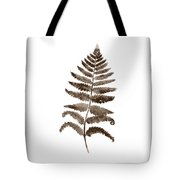 Fern Leaf Botanical Poster, Brown Wall Decor Modern Home Art Print, Abstract Watercolor Painting Tote Bag