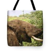 Browsing Elephant Tote Bag