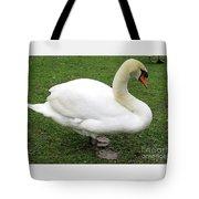 Bruges Swan 1 Tote Bag