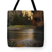 Bruneau Canyon Tote Bag