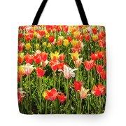 Brushed Tulips Tote Bag
