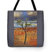 Bryce Canyon 46 - Sunrise Point Tote Bag