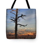 Bryce Canyon Dead Tree Sunset 3 Tote Bag