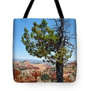 Bryce Canyon Fairyland Point Portrait Tote Bag