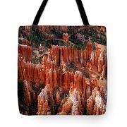 Bryce Canyon In Utah Tote Bag