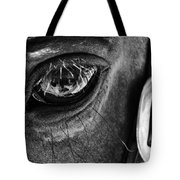 Bryce Canyon National Park Horse Bw Tote Bag
