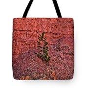 Bryce Canyon Pine Tree Tote Bag