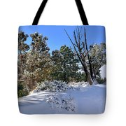 Bryce Canyon Snowfall Tote Bag