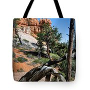 Spires On Navajo Trail Tote Bag