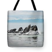 Bubble-net Group With Mountains In Alaska Tote Bag