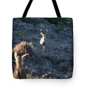 Buck And Does Tote Bag