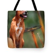Buck Tote Bag by Colleen Taylor