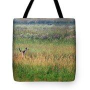 Buck In Field Tote Bag
