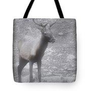 Buck In Fog On Hurricane Ridge - Olympic National Forest - Olympic National Park Wa Tote Bag