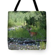 Buck In Pond Tote Bag