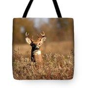 Buck In The Weeds Tote Bag
