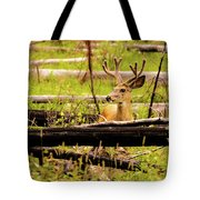 Buck In Velvet Tote Bag