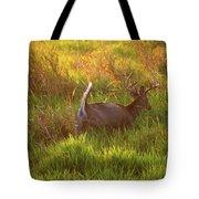 Buck On The Run  Tote Bag