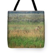 Buck Running In Field Tote Bag
