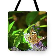Buckeye Butterfly On The Move 1 Tote Bag