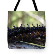 Buckeye Caterpillar Tote Bag