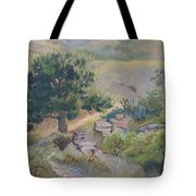Buckhorn Canyon Tote Bag