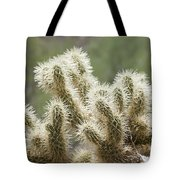 Buckhorn Cholla Tote Bag