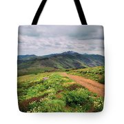 Buckskin Cyn June-3116-r1 Tote Bag