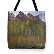 Buckskin Mtn And Friends Tote Bag