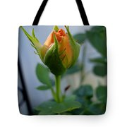 Bud Of A Rose Tote Bag