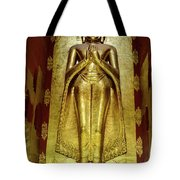 Buddha Figure 1 Tote Bag