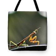 Buddha Bow Tote Bag
