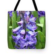Budding And Flowering Purple Hyacinth Flower Tote Bag