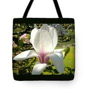 Budding Magnolia Tote Bag