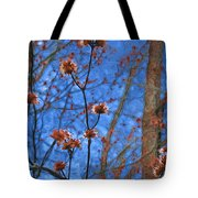 Budding Maples Tote Bag