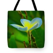 Buds And A Blossom Tote Bag
