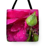 Buds And Drops Tote Bag