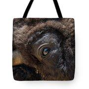 Buff Eye Tote Bag