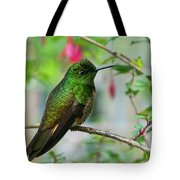 Buff-tailed Coronet Tote Bag