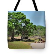 Buffalo At Hambantota Tote Bag