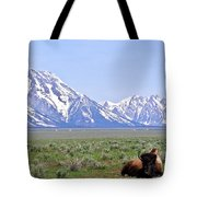 Buffalo At Rest Tote Bag