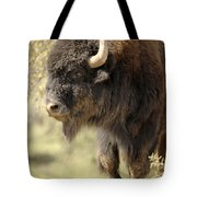 Buffalo Bull Tote Bag