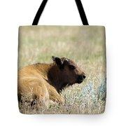 Buffalo Calf Tote Bag
