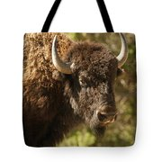 Buffalo Cow Tote Bag