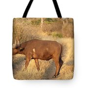 Buffalo Crossing Tote Bag