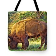 Buffalo Custer State Park  Tote Bag