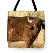Buffalo Encounter Tote Bag