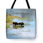 Buffalo Walk Tote Bag