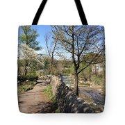 Buffalo Glen Park Williamsville Tote Bag